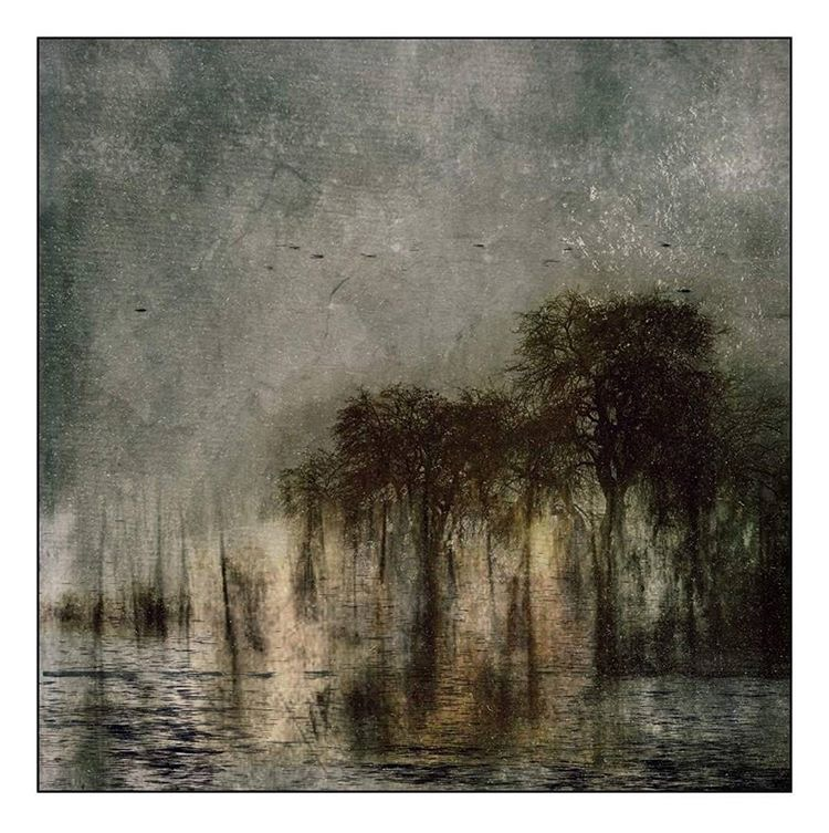 The Dark Nights Never End. A dark landscape image by featured Artist, Celia Anahin